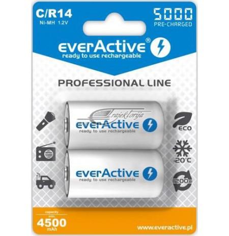 EVERACTIVE RECHARGEABLE BATTERIES EVHRL14-5000